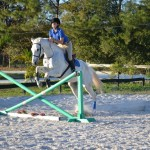 Large ring with a full course of jumps
